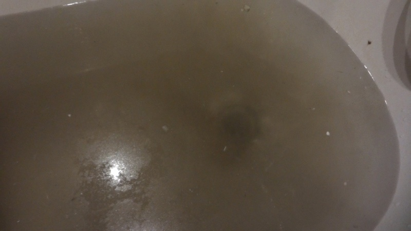 Прочистка канализации. Мой опыт. Что помогло и что нет. Эпический засор. - фото 4