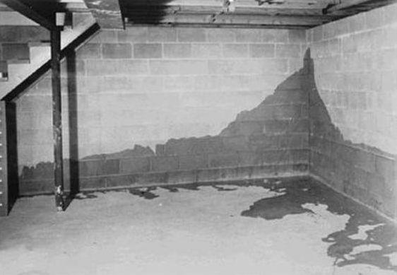 Почему сыреет подвал и как сделать его сухим  - фото 1