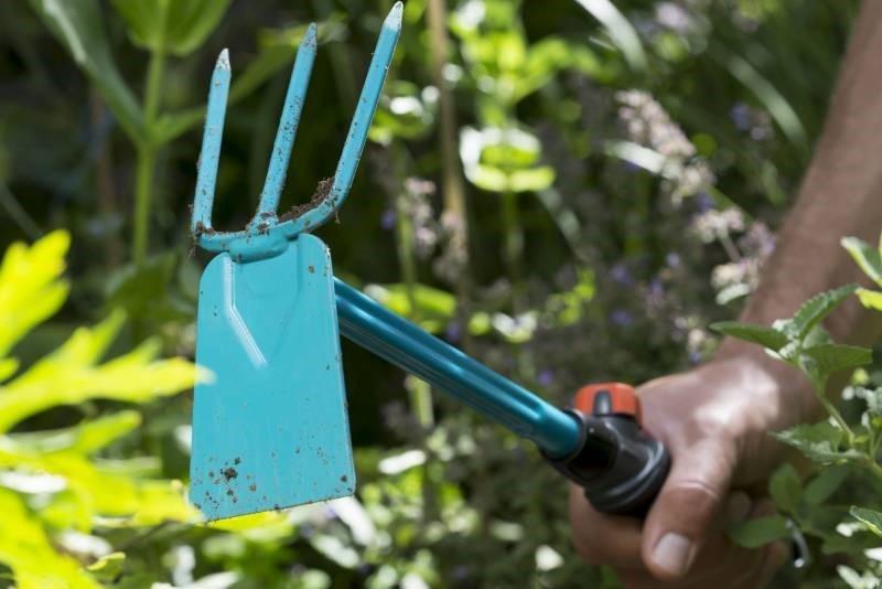 Основной и дополнительный садовый инструмент: что пригодится дачнику - фото 5