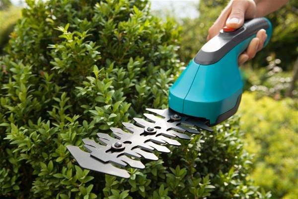 Основной и дополнительный садовый инструмент: что пригодится дачнику - фото 12