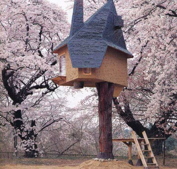 Детские дома на деревьях - фото 3