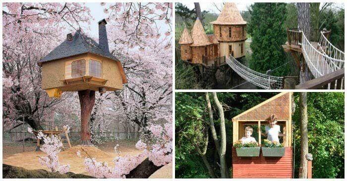 Детские дома на деревьях - фото 1