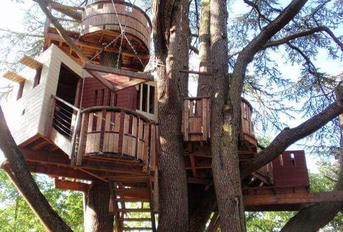 Детские дома на деревьях - фото 6